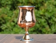 Stainless Steel Wine Glass with Outer Copper Coating